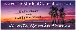 Banners 250x100 - The Student Consultant 3 letra oscura